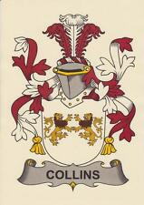 IRISH HERALDIC COAT OF ARMS A4 PARCHMENT PAPER PRINT FOR YOUR NAME.