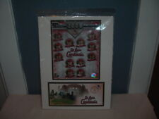 VERY HARD TO FIND St. Louis Cardinals 2008 USPS Team Photo/Postal Cache, MINT!