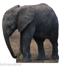 Baby African Elephant Lifesize Cardboard Standup Standee Cutout Poster Figure