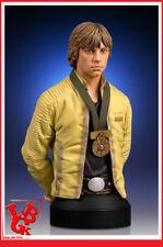Gentle Giant SW Luke Skywalker Hero O Yavin Mini Bust Busto