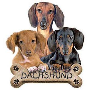 Dachshund Pups  Dog  Sweatshirt    Sizes/Colors