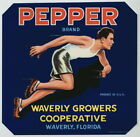 PEPPER Vintage Waverly Florida Citrus Crate Label Runner ***AN ORIGINAL LABEL***