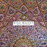 NICK MULVEY - WAKE UP NOW (ORANGE VINYL)    VINYL LP NEU