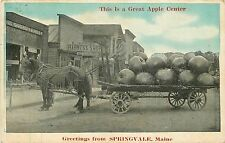Maine, ME, Springvale, Greetings, This is a Great Apple Center 1919 Postcard