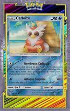 🌈Cadoizo Reverse-SL2:Gardiens Ascendants-26/145-Carte Pokemon Neuve Française
