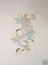 Western Azalea by Moran - flowers -signed & numbered