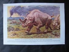 1942 Dinosaur or Early Life  print by Charles R. Knight - Titanotherium