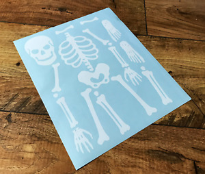 SKELETON TEACHING STICKERS STICKY DECALS WALL TOY BOX CAR VAN BUMPER LAPTOP