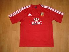 British & Irish Lions shirt size extra large, SA 2009, adidas, UK FREEPOST!