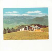 AK Ansichtskarte Bad Kohlgrub / Hörndle Hütte