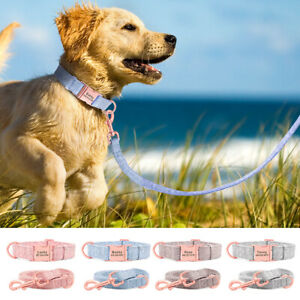 Personalised Nylon Dog Collar and Lead Set Engraved Buckle Small Medium Dogs S-L