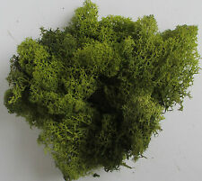 Foliage Lichen Moss for Model Trees Bushes Hedges Olive Green 50g Bag