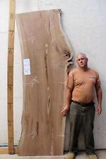 English Elm Kiln Dried Raw Wood Slab Table Live Edge Vanity Counter Bar 3941x1