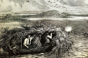 Shooting CANVAS BACK DUCKS Rifles HUNTERS in Hut 1875 Lumley Antique Art Matted