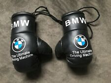 Mini Boxing Gloves Worldwide Country Flags for Car Trucks Bus Jeeps SUV RV Decor