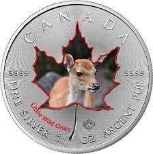 1 Unze Silber Maple Leaf Farbe 2016 Kanada farbig Tierbabys Weisswedel-Hirsch