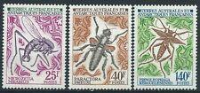 TAAF - FSAT - 1972 - Insectes I - N° 40 à 42  - Neuf ** - MNH