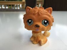 Littlest Pet Shop Brown, Cream Chow Chow Blue Eyes Puppy Dog