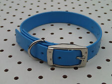 "TERRIER, WHIPPET Dog Collar 16""x3/4""  - Hunting, Hound, Fox, Pig dog, Pet BLUE"