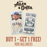 2019 TOPPS ALLEN & GINTER MINIS A&G BACK SPs #1-400 SPs BUY 1 GET 1 FREE!