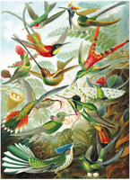 1000 pieces Jigsaw Puzzle Flying Birds Education Puzzles For Adults Kids