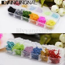 3D Nail Art Decoration Coral Seaweed Dried Preserved Flower Design 12 Colors