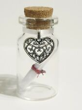 Personalised Anniversary Gift, Wedding Gift, Gift for Her, Message in a Bottle.
