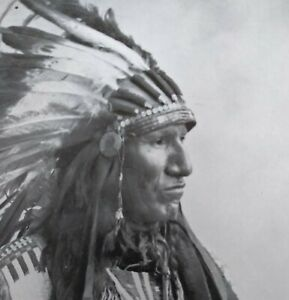 Vintage Print, Black Bird Chief, Pittsburg Plate Glass
