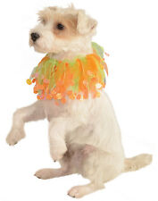 Glow In The Dark Pet Halloween Orange Pumpkin Scrunchie Collar
