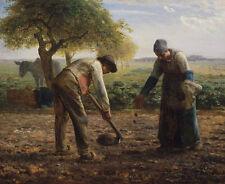 Potato Planters Jean-François Millet contadini campo patate piante B a3 02519