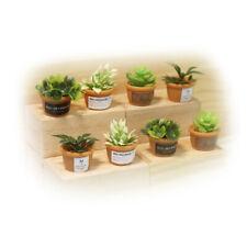 Dollhouse 8Pcs Set Plant Bonsai Miniature Decor Pot Plants Accessories