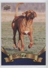 2018 Upper Deck Canine Collection Blue Tosa #202 0n8
