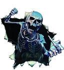 2pc Car Vinyl Skull Skeleton Stickers Truck Window Wrap Decals Motorcycle Helmet