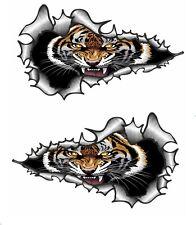 LARGE LONG Handed Pair Ripped Torn Metal Roaring Bengal Tiger vinyl car sticker