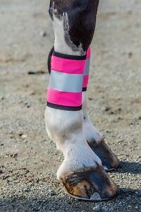 New Hi Vis Reflective Horse Leg Bands Wraps Yellow Pink Orange Safety All Sizes