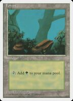 A Rocks Unlimited MINT Forest Basic Land MAGIC THE GATHERING CARD ABUGames