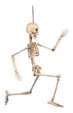Hanging Human Squelette Prop Halloween Film TV Horreur Nouveau mobiliers articulations 50 cm