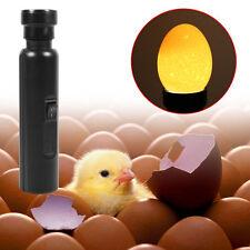 Black Cool Light LED Candling Lamp Incubator Super Bright Egg Candler Tester New