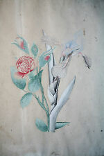 AQUARELLE ORIGINALE-FLEURS-IRIS-ROSES-NATURALISTE-