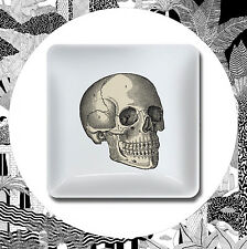 Curio Trinket Tray- Skull Skeleton Head Bone Anatomy Jewellery Coin Dish Magpie