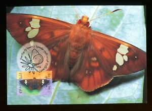1998 Australia Common Red-Eye Butterfly Maxi Card Cairns. SG 1815. PHQ