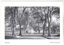 """~Post Card~""""The Oval"""" (Lovers Lane/Center Campus Life)*Fort Collins, Co. (#168)"""