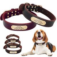 Personalised Dog Collar Labrador Pitbull Large Dogs Genuine Leather Collar L XL