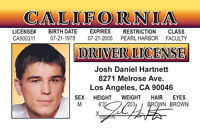 Josh Hartnett star of 30 Days of Night   plastic ID card Drivers License -