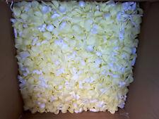 Chip Patatine Fritte Styroporchips Materiale da Imballaggio - Misto