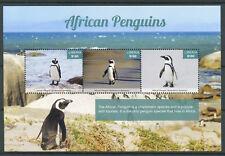 Liberia 2017 MNH African Penguins 3v M/S I Penguin Birds Stamps