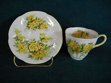 Royal Albert Blossom Time Series Laburnum Cup and Saucer Set