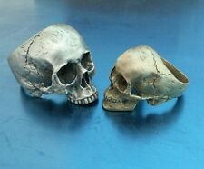 Half jaw skull amazing detail 925 sterling hallmarked UK made**REDUCED** V to Z+
