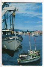 1972 Catherina G & other Fishing Boats Fisherman's Wharf Santa Cruz Ca Postcard