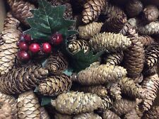 20 LONG PINE CONES CHRISTMAS CRAFTS, FLORAL, TREES BOWS GARLANDS, WREATHS. 5-7cm